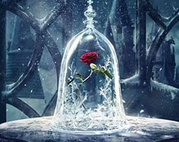 Rose in beauty and the beast