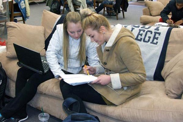 Students study together in the library.